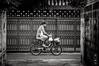 Bangkok By Bicycle #0214-2 (svenpetersen1965) Tags: bangkokstreet alley fence motorbike motorcycle street transport ขนส่ง รถมอเตอร์ไซค์ bangkok krungthepmahanakhon thailand th