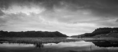 Okereka bw (eos1969) Tags: sunset lake loch still water view calm evening long exposure longexposure bw blackandwhite tourism private serene quiet vittorama panorama lightroom canon eos 5d mkll dslr stitched blacks whites sky megapixels full frame new zealand newzealand aotearoa nz north island rotorua okereka tarawera moumo astoundingimage greatphotographers flickr