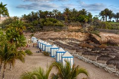 Palm Trees and Beach Huts (Nige H (Thanks for 6.5m views)) Tags: nature landscape beach beachhuts palmtrees delduquebeach playadelduque costaadeje tenerife