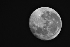 Lua cheia em 18 de setembro de 2016 (srie com 4 fotos)  //  Full moon on September 18, 2016 (series with 4 photos) (Parchen) Tags: lua moon luacheia fullmoon luar lunar luando enluarado enluarando 18092016 18desetembrode2016 luagrande grande bonita bela beleza foto fotografia imagem registro parchen carlosparchen