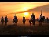 Knights Benghazi . . (العقوري [ Libya Photographer ]) Tags: horses horse canon knights 7d libya benghazi حصان ليبيا خيل احصنه خيول فرسان بنغازي احفاد حصنة فراسين فـراسـين احـفـاد الـهم مـاضـي حـافـل بـفخار ابطـال مـعـارك معـروفيـن هـضول احـفــادك يامختـار أحــــــــــفاذ المخـتـــــــــــــــار حصنه