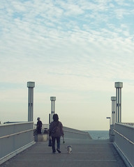 to the ocean (spinster cardigan) Tags: ocean life bridge autumn sea sky dog holiday fall beach japan walking relax outdoors afternoon open view emotion time weekend walk air relaxing calm fresh health creativecommons meditation  comfort refreshing stroll kanagawa       shonan retirement contemplation  tsujido   retire   seabreeze destress         spinstercardigan