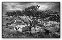 African Rural Scene (david.gill12) Tags: southafrica greatphotographers ruralareas
