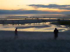 Tidal Dusk (zinetv) Tags: ocean sunset water night capecod tidalflats