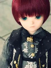 Warlock (Princeyface) Tags: blue doll heart olive fairy tiny bjd choice abjd msd bluefairy dollheart tinyfairy