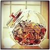 Grandma's candy jar. (Christybrug) Tags: food glass valencia canon square yum candy candybars delicious squareformat snack jar candyjar iphoneography instagramapp uploaded:by=instagram
