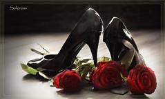 Appearances (Soloross) Tags: rose canon fiori 1001nights terra rosso ricerca luce scarpa vernice lucido apparenza profumo tacchi sensualità 1001nightsmagiccity
