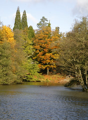 AUTUMN LAKE (Adam Swaine) Tags: county uk blue autumn trees red england sky green english water beautiful yellow rural canon landscape sussex countryside flora walks britain lakes east autumncolours nationaltrust eastsussex waterside 2012 counties wakehurstplace naturelovers 24105mm autumnviews thisphotorocks adamswaine mostbeautifulpicturesmbppictures wwwadamswainecouk ntnature