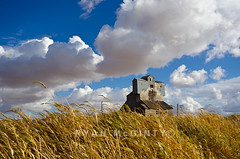 Pullman's Old Grain Silo (Ryan McGinty) Tags: autumn clouds landscape washington silo pullman palouse ryanmcginty