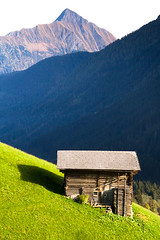 Alpine Pasture (Walter Quirtmair) Tags: autumn mountains alps green fall grass forest shed meadow peak hut alm stud saustria