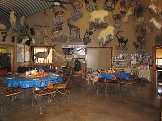 Texas Whitetail Hunting Lodge - Kerrville 3