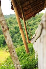 PhamonVillage-DoiInthanon-ChaengMai-Trip_By-P r i m t a a_E10886166-033