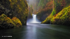 USA - Oregon - Punch Bowl Falls (Jarrod Castaing) Tags: travel trees usa water oregon creek river landscape waterfall moss rainforest rocks eagle bowl columbia falls gorge punch jarrodcastaing wwwjarrodcastaingcom