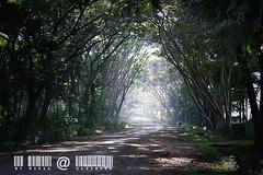 KhaoYai view by มาเรีย ณ ไกลบ้าน_G7202358-044