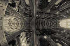 Chartres cathedral fisheye 2012-08-17 162252 Mono hdr (AnZanov) Tags: france photographer andrea fisheye hdr chartres hdri samyang zanovello anzanov