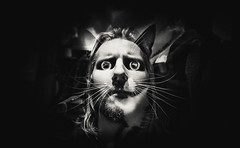 Catman (Ross Harvey | www.rossharvey.com) Tags: man cat doubleexposure olympus 24mm omd
