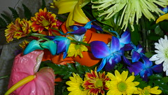 Fresh Flower Arrangement Closeup - Florist (sejuselektion) Tags: birthday shop barbados florist bridal flowershop flowershops freshflowerarrangement sejuselektion flowershopinbarbados sejuselektionflowershop sejuselektionflowergiftshop flowershopsinbarbados barbadosweddings barbadosflorist barbadosdestinationweddings barbadosweddingflorist
