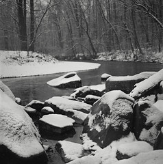snow on darby creek II (Owen Luther) Tags: trees winter blackandwhite white snow black cold 6x6 film analog creek mediumformat square fuji pennsylvania monochromatic hasselblad pa darby springfield flakes acros100 hasselblad500cm