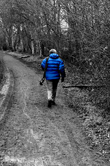 Out in front (Coedy453) Tags: wood blue trees woodland walking blackwhite path hintofcolor nlkon d300s