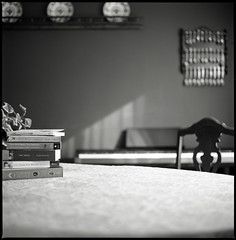 the geometry of a dining room. (tumbleweed.in.eden) Tags: light film home mediumformat fuji books hasselblad diningroom fujifilm christmastime acros