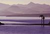 Playa de Nares (marathoniano) Tags: sunset art landscape atardecer see mar arte paisaje murcia ola mediterráneo bahía mazarrón marathoniano ramónsobrinotorrens