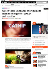 The Verge - Catnip: Egress to Oblivion?