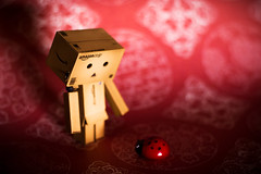 Hello Little One! (5/52) (abneysc) Tags: red bug insect toy toys secret ladybug lives danbo danboard