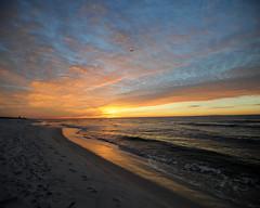 put a gull in it fbpr (wkepkake1) Tags: beach night sunrise florida cloudy navarre pinkclouds fierysky