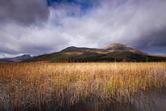 Loch Cill Chriosd (Chris..Miles) Tags: skye water reeds loch cill chriosd