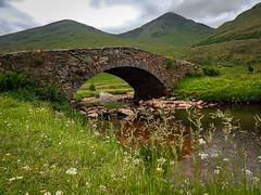 Scotland (cmilowka) Tags: 18th butterbridge landscape lochlomond scoltland thetrossachsnp