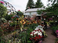 P6080779 (photos-by-sherm) Tags: good quilts retail garden flowers sculpture yard accessories amana iowa summer decorations metal