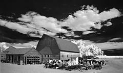 Eckhardt Farms - Infrared (eDDie_TK) Tags: colorado co weldcountyco weldcounty weld farms farming rural rurallife ruralliving barns redbarns blackandwhite ir infrared