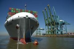 Manchester Bridge DST_5867 (larry_antwerp) Tags: psa psaterminal noordzeeterminal manchesterbridge kline bow boeg 9706748 antwerp antwerpen       port        belgium belgi          schip ship vessel        schelde