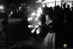 Corso-Fleuri-Selestat-2016-72.jpg (valdu67photographie) Tags: alsace corsofleuri selestat 2016 nuit international basrhin expositions fanabriques fanabriques2016 lego rosheim visite