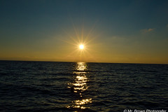 DSC_0787 (alessandro_marrone) Tags: ischia estate santangelo sunset vacanza mare tramonti ferie