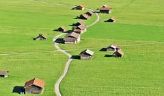 Adrian Vesa Photography (adr.vesa) Tags: road way path barns rural village dorf panorama landscapes