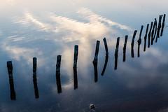 Mystery train (fidgi) Tags: iledolonne marais salant saltpan reflet reflection eau water ciel sky nuage cloud bleu blue canon canoneos5dmk3 tamron vende