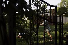 146/365 (J. Lee Syn) Tags: griswolds365 365 threesixtyfive jleesyn childhoodunplugged clickinmoms realmomtogs momtog letthekids letthembelittle subjectlight lightinspired followthislight findingthelightwitherinhensley vsco summer dearphotographer stillaboy kidsoftheoutdoors