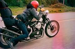 (kynan tait) Tags: kynantaitcom articstag motorcycle travel adventure harvey foster harley davidson