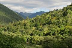 Rila Mountains, near Rila Monastery, Bulgaria (Elisa1880) Tags: bulgaria bulgarije rila mountains rilagebergte monastery landscape landschap bomen trees