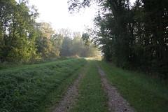 IMG_2858 (Annie Aguirre) Tags: ecp elkhart county parks park benton spillway nature birding birders people walk walks fall