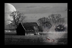 Halloween 2016 (Kathy_9) Tags: pspx9 layers topazimpression topazbweffects moon oldbarn ghoul bats hss halloween kathy9 spooky scary painterly