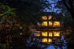 the tea garden (Jixin YU) Tags: viewing night natural landscape nature water leaf outdoor lake westlake light pond tourism plant teahouse excursion tree travel garden beautiful fish g20 green lotus rain flower hangzhou