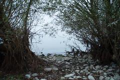 16_09_25_Herbst am Bodensee-12.jpg (werwen01) Tags: morgenstunde jahreszeit friedrichshafen orte bodensee herbst ereignisse ostufer