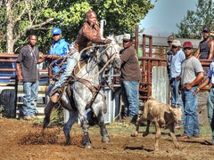 Toss the Loop (clarkcg photography) Tags: calf roping rope horse work rodeo hobby practice jackpot rentiesville gettogether locals connorsropingteam