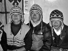 Huey, Dewey, Louie (Qui, Quo, Qua); my porters. (vittorio vida) Tags: nepal camp yak sky snow mountains yellow trekking children asia stupa tent monks temples glaciers chorten himalaya yaks khumbu everest sherpa puja bazar lukla namchebazar amadablam porters chola gokyo mounteverest asianchildren icefall tengboche everestbasecamp pumori everesttrek kalapatthar chooyu ngozumpa luklalanding