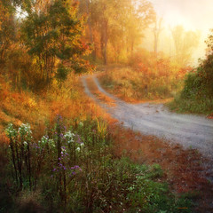 >>>> the morning road <<<< (xandram) Tags: road morning autumn trees fog photoshop sunrise textures asters magicunicornverybest magicunicornmasterpiece