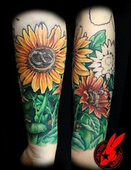 Sunflower Tattoo by Jackie Rabbit (1st sitting) (Jackie rabbit Tattoos) Tags: city flower tattoo star virginia cool colorful pretty bright good awesome great rings roanoke va sunflower jackierabbit