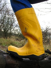 Yellow Dunlop Purofort+ (Noraboots1) Tags: work boots rubber wear wellies gummistiefel dunlop gummistvler purofort
