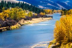 Bitterroot River (John Sieber) Tags: autumn montana fallcolors missoula rivers lolo bitterrootriver